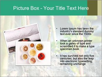 Japanese knotweed PowerPoint Templates - Slide 20