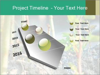 Japanese knotweed PowerPoint Templates - Slide 26