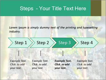 Japanese knotweed PowerPoint Templates - Slide 4