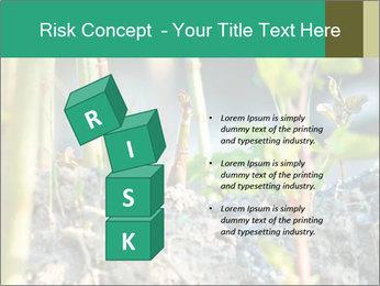 Japanese knotweed PowerPoint Templates - Slide 81
