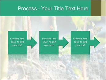 Japanese knotweed PowerPoint Templates - Slide 88
