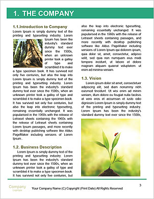 0000094526 Word Template - Page 3