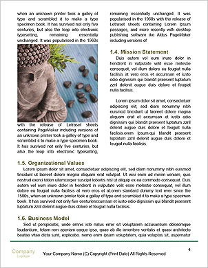 0000094526 Word Template - Page 4
