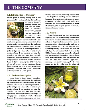 0000094527 Word Template - Page 3