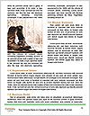 0000094529 Word Template - Page 4