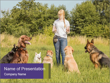 A group of dogs PowerPoint Templates