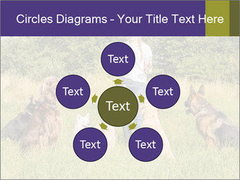 A group of dogs PowerPoint Templates - Slide 78