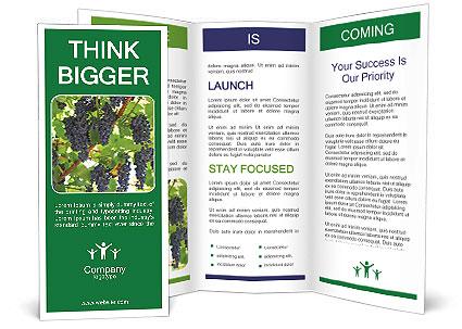 0000094535 Brochure Template