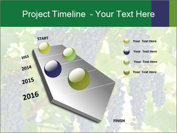 Ripening grape PowerPoint Template - Slide 26