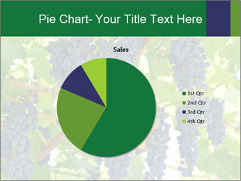 Ripening grape PowerPoint Template - Slide 36
