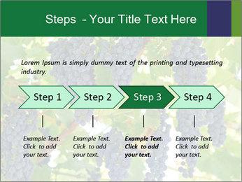 Ripening grape PowerPoint Template - Slide 4