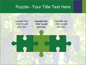 Ripening grape PowerPoint Template - Slide 42