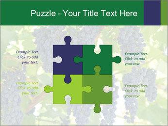 Ripening grape PowerPoint Template - Slide 43