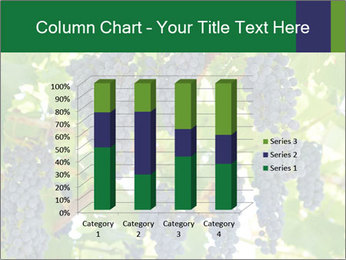Ripening grape PowerPoint Template - Slide 50