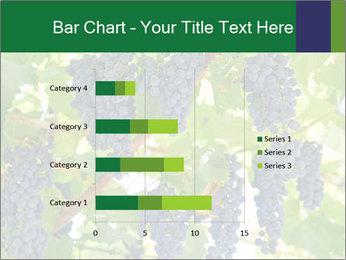 Ripening grape PowerPoint Template - Slide 52