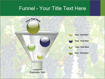 Ripening grape PowerPoint Template - Slide 63