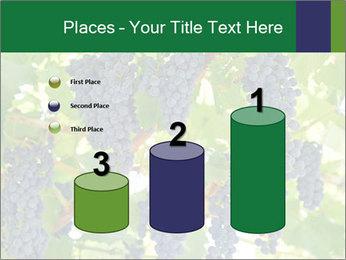 Ripening grape PowerPoint Template - Slide 65