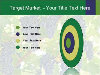 Ripening grape PowerPoint Template - Slide 84