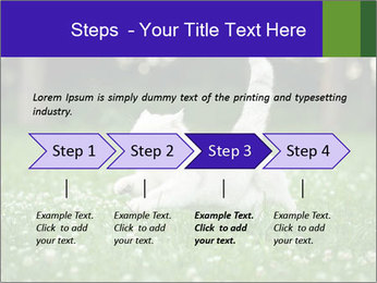British short hair cat PowerPoint Templates - Slide 4