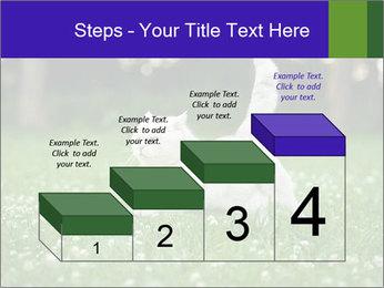 British short hair cat PowerPoint Templates - Slide 64