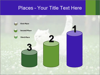 British short hair cat PowerPoint Templates - Slide 65