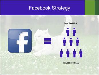 British short hair cat PowerPoint Templates - Slide 7