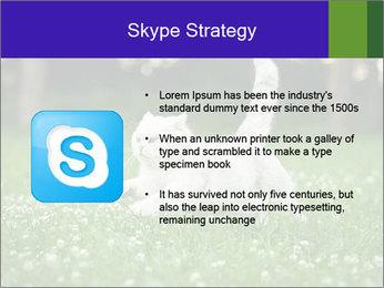 British short hair cat PowerPoint Templates - Slide 8