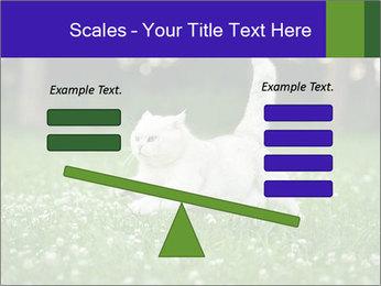 British short hair cat PowerPoint Templates - Slide 89