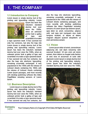 0000094540 Word Template - Page 3