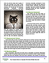 0000094540 Word Templates - Page 4
