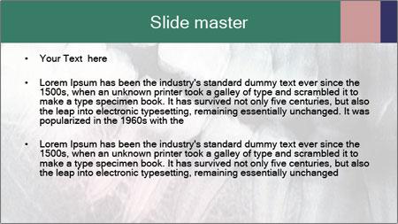 X-ray of teeth PowerPoint Template - Slide 2
