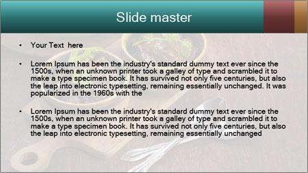 Vegetarian stew PowerPoint Template - Slide 2