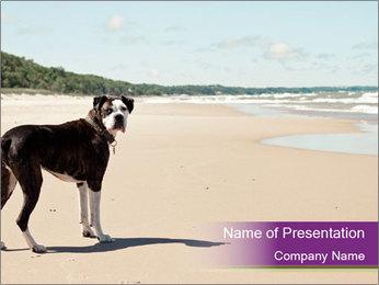 Dog PowerPoint Template - Slide 1