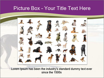 Dog PowerPoint Templates - Slide 16