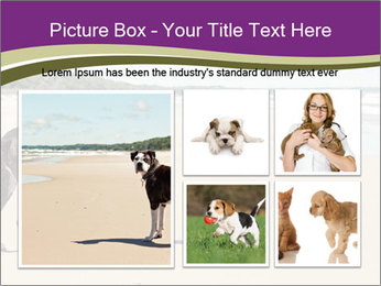 Dog PowerPoint Template - Slide 19