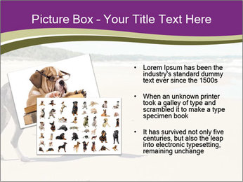 Dog PowerPoint Templates - Slide 20