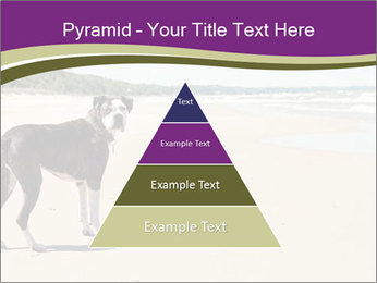 Dog PowerPoint Templates - Slide 30