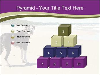 Dog PowerPoint Template - Slide 31