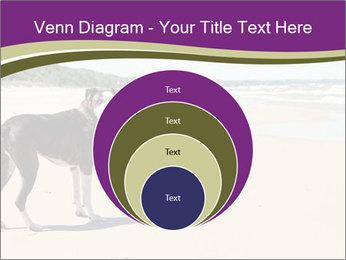 Dog PowerPoint Template - Slide 34