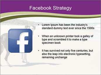 Dog PowerPoint Template - Slide 6