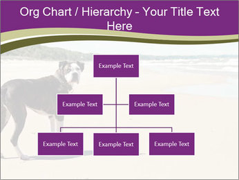Dog PowerPoint Templates - Slide 66