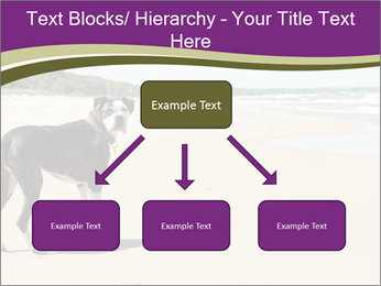 Dog PowerPoint Template - Slide 69