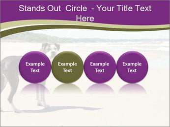 Dog PowerPoint Template - Slide 76