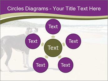 Dog PowerPoint Template - Slide 78