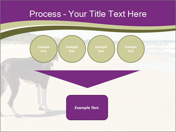 Dog PowerPoint Template - Slide 93