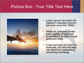 Couple jumping dolphins PowerPoint Template - Slide 13