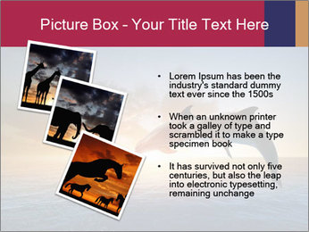 Couple jumping dolphins PowerPoint Template - Slide 17