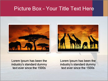 Couple jumping dolphins PowerPoint Template - Slide 18