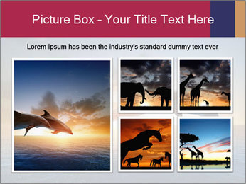 Couple jumping dolphins PowerPoint Template - Slide 19