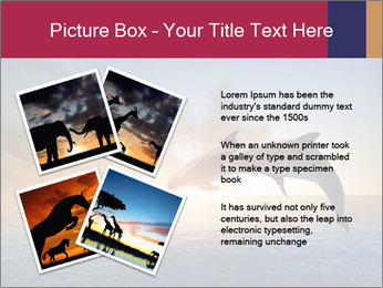 Couple jumping dolphins PowerPoint Template - Slide 23